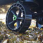 Railblaza C-TUG TRansportwagen / Slipwagen mit Sandrädern auf nassem Laub